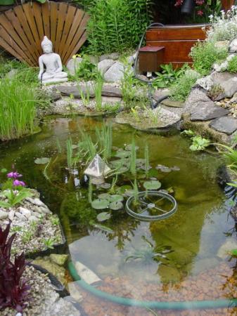 Bodem van mijn vijvertje tuinforum for Klein vijvertje aanleggen