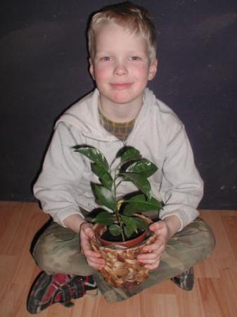 Geplant door mijn zoon, maar wat is het?