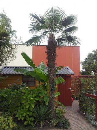 Tuin 23-09-2012