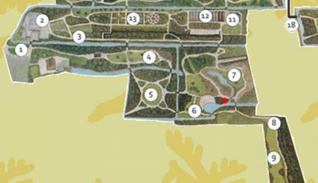 boom in Arboretum Trompenburg