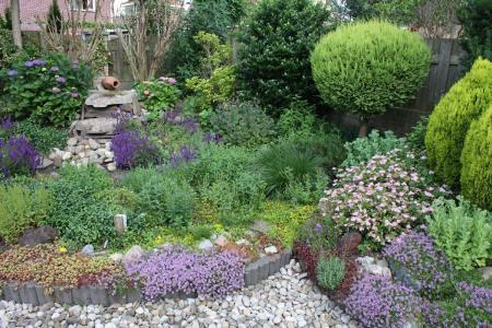Nieuw huis, nieuwe tuin, nieuwe planten..!