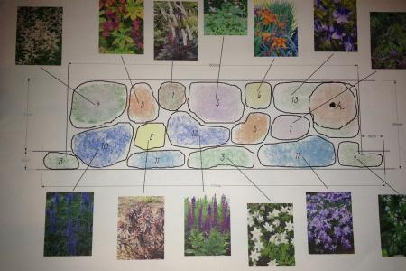 Beplanting voor een border/bloembak in de schaduw