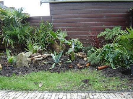 exotische planten met pot ingraven
