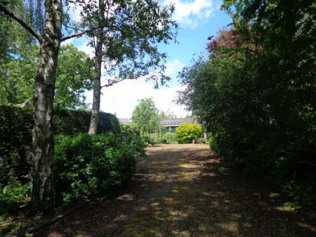 Een wandeling door mijn tuin
