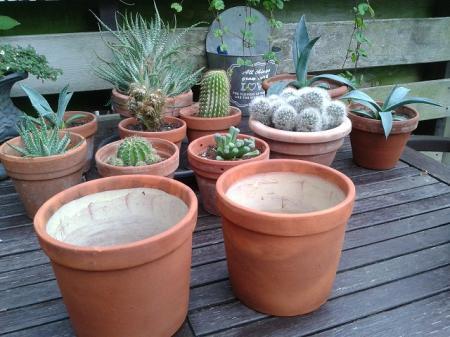 terracotta potten
