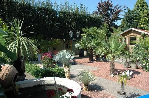 Nieuwe aanwinst in de tuin ondanks de hitte
