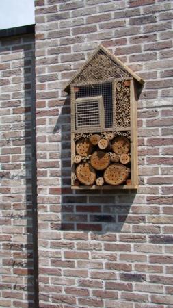Bezoek in mijn nieuwe insectenhotel