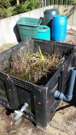 Draadalg verwijderen uit 2e hands planten en lava