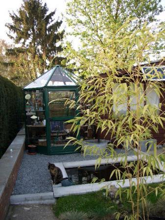 serreverwarming: Bio- ethanol en speksteenstoof