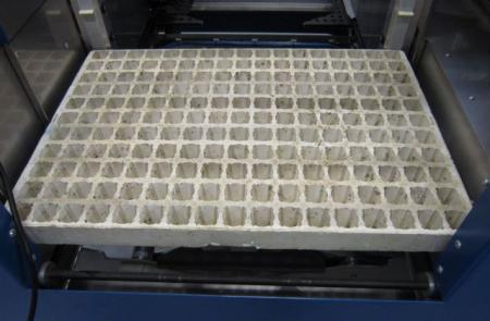 Voor welke soort stekken is deze tray?