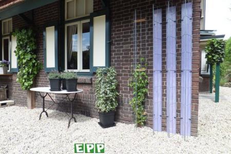 Verticaal tuinieren tegen muren en andere wanden.