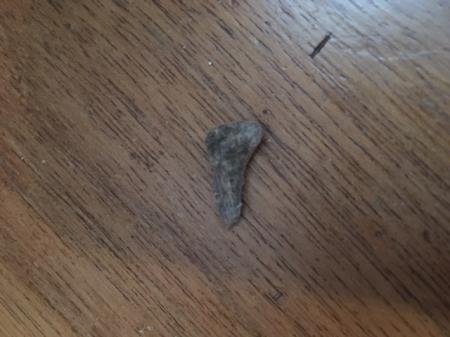 Wie weet wat dit is?