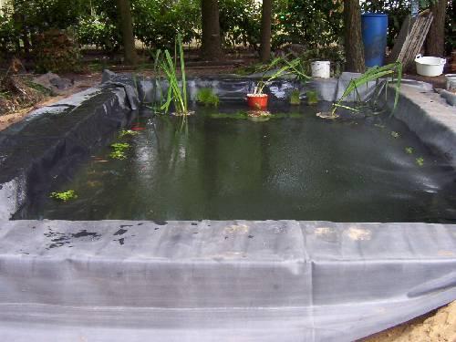 Nieuwe vijver met plantenfilter