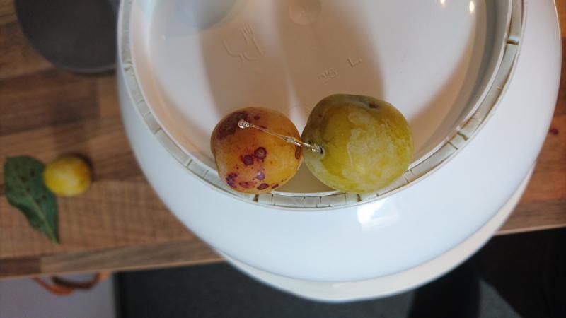 Buitenkant vruchten met vlekken en hars
